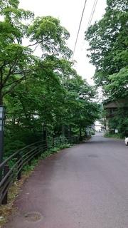 DSC_0035.JPG